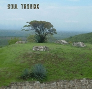 soultronixx